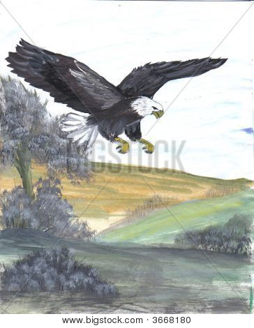Painting Bald Eagle
