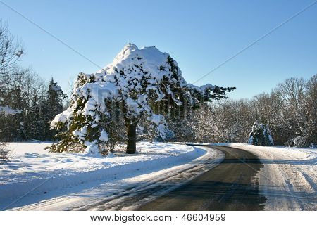 Winter Road In Countryside