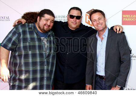 LOS ANGELES - JUN 8:  Jorge Garcia, Greg Grunberg, Chris Harrison at the 2nd Annual T.H.E EVENT at the Calabasas Tennis and Swim Center on June 8, 2013 in Calabasas, CA