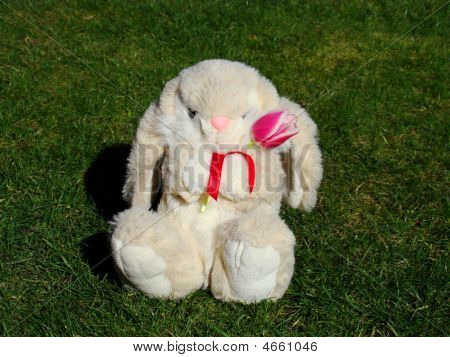 Easter Bunny With Flower