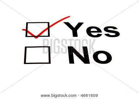 Yes Checkbox Selected - Isolated On White