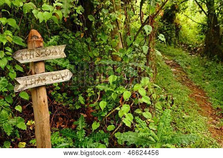 Funny Garden Pathway Sign Pointing Down A Path