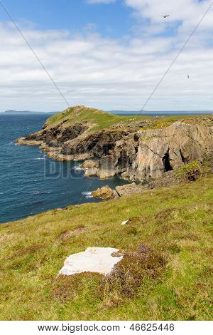 Wooltack Point hill overlooking Skomer Island Pembrokeshire West Wales