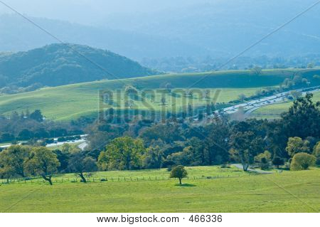 Northern California Spring View