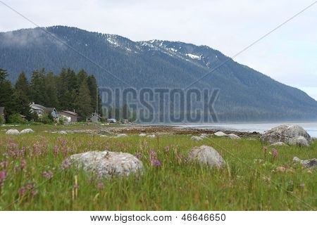 Coastal Landscape at Petersburg Alaska