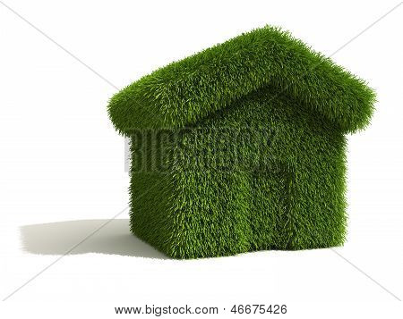 Grass Covered House