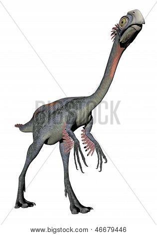 Gigantoraptor Dinosaur - 3D Render
