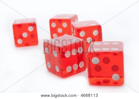 Five Dice On White