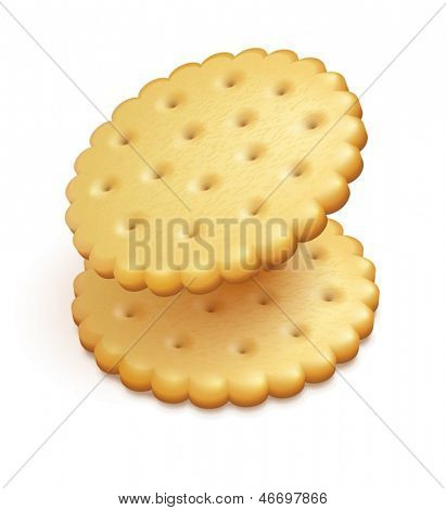 two crisp cookies snacks isolated on white background - eps10 vector illustration