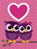 cute love birds owls