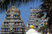 stock photo of hindu temple  - Sri Siva Subramaniya Swami Hindu Temple in Nadi Fiji - JPG