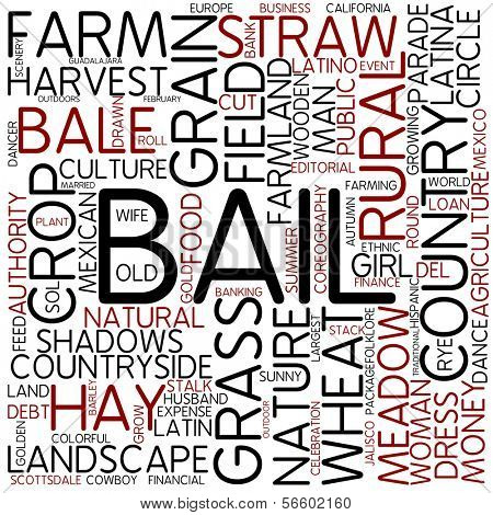 Word cloud - bail