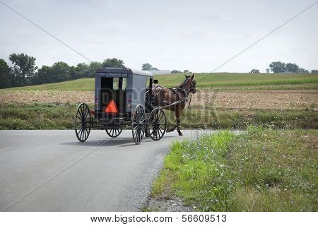 Amish Buggy Turns A Corner In Lancaster County Pennsylvania