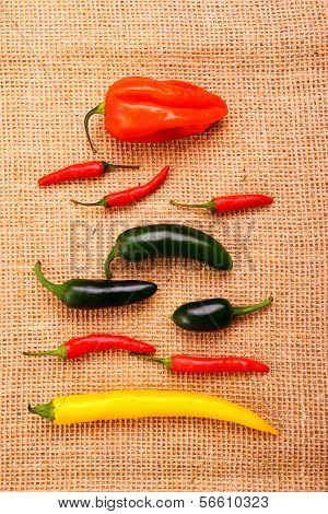 Hot Pepper Collection On Jute Background