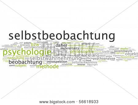 Word cloud - introspection