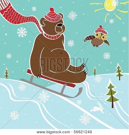Brown Bear Sledding In Nature.Vector humorous Illustration