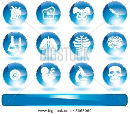 Biology Shiny Round Icon Set