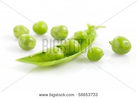 Pea Isolated