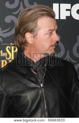 LOS ANGELES - JAN 7:  David Spade at the IFC's