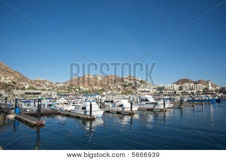 Cabo San Luca's Marina