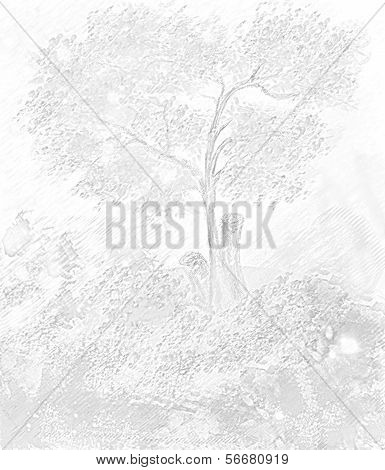 The Drawn Tree.