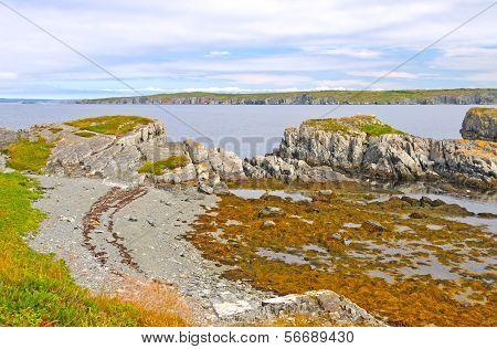 Coastal Rocks At Low Tide