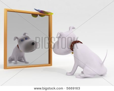 Dog and mirror