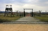 picture of nazi  - Nazi Concentration Camp Auschwitz Birkenau - JPG