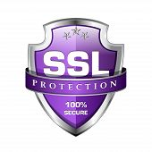 SSL Protection Secure Shield Icon