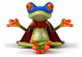 stock photo of amazonian frog  - Frog doing yoga - JPG