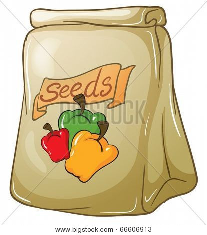 Illustration of a pack of bell pepper seeds on a white background