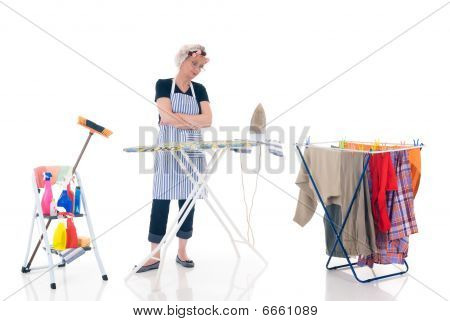 Domésticos, limpeza