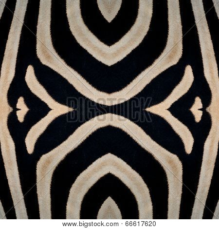 Beautiful Seamless Zebra Skin In Best Texture Background