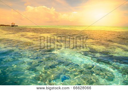 Tropical Blue Sea Water