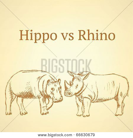 Sketch Hippo Vs Rhino, Vector Background