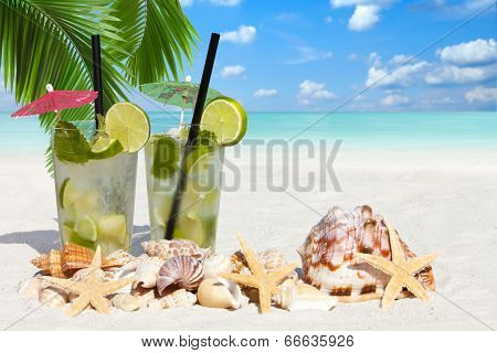 Cocktail Under Palm Leaves