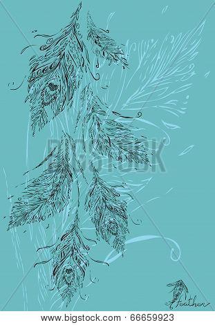 Peacock bundle feathers