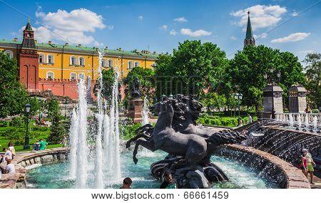 Horses In The Alexander Garden