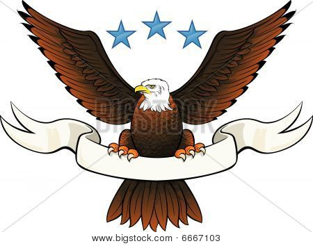 Bald eagle insignia