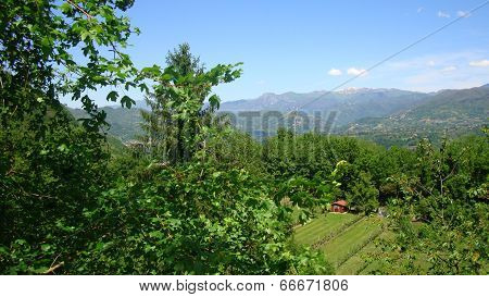 glimpse of the landscape of Tuscany Italy, you see the mountain Apennino between Toscana and Emila R