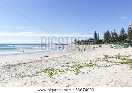 Gold Coast Snapper Rocks Beach