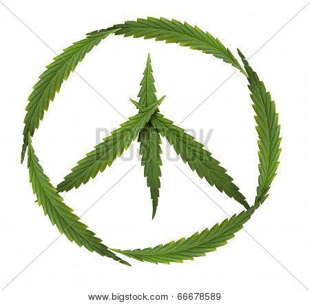 Symbol Of Peace - Marijuana (symbol Of The Hippie And Marijuana Leafs)