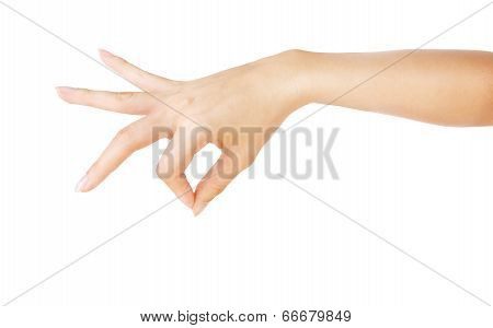 Woman Hand Holding Something