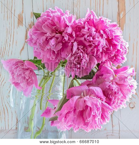 Pink Peonies In A Glass Carafe