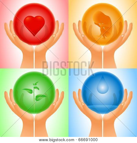 Set Hand Transparent Sphere Heart Embryo Sprout Water