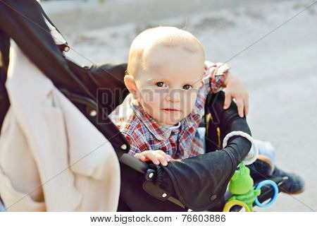 Baby Boy In Buggy
