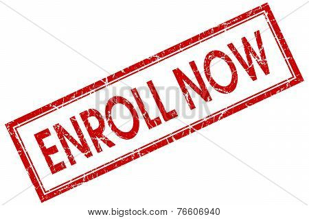 Enroll Now Red Square Stamp Isolated On White Background