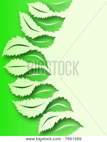 Leaf To Leaf