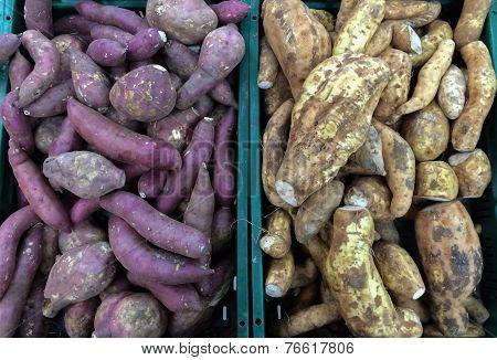 Sweet Potato And Cassava