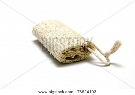 Loofah Isolated On White